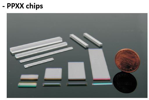 PPXX chips